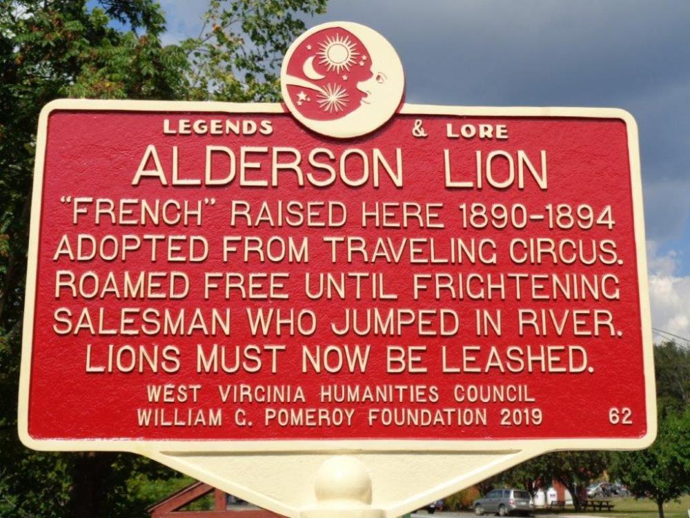 AldersonLion